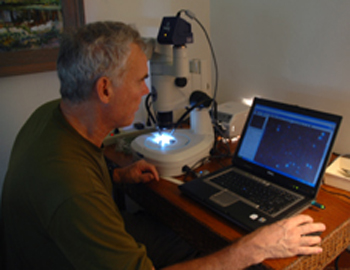 Cal Welbourn identifying Red Palm Mite.