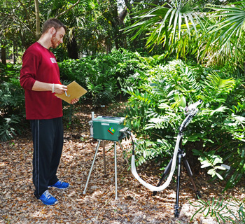 Photo of Chris Krieg investigating resource acquisition in a cycad