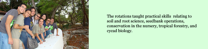 The rotations taught practical skills  relating to soil and root science, seedbank operations, conservation in the nursery, tropical forestry, and cycad biology.