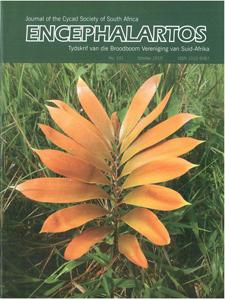 Cover of Encephalartos, October 2010