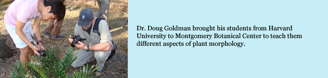 Dr. Doug Goldman brough his students from Havard University to Montgomery Botanical Center to teach them different aspects of plant morphology.