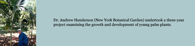 Dr. Andrew Henderson (New York Botanical Garden) undertook a three-year project examining the growth and development of young palm plants.