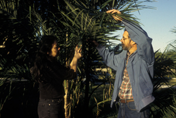 Photo of Dr. Larry Noblick and Dr. Bee Gunn with a palm