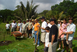 South Florida Palm Society workday at Montgomery Botanical Center.