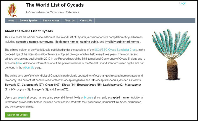 Screenshot of the World List of Cycads Website