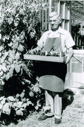 Archive Photo of Robert H. Montgomery holding seedlings