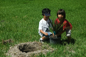 Coral Gables Museum City Trekkers.  Kids Planting.