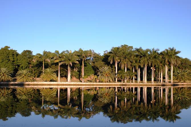 Royal Lake at Montgomery Botanical Center.
