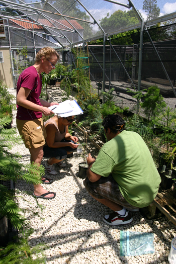 Photo of a group of researchers in the nursery
