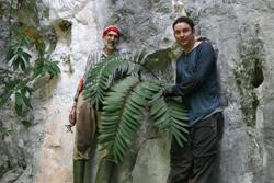 Michael Calonje and Jan Meerman with Zamia