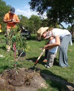 Tessy tree planting at Montgomery Botanical Center