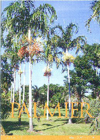 The Cover of Le Palmier