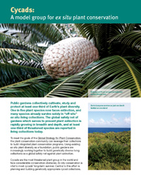 Cycads provide a model group for garden conservation.