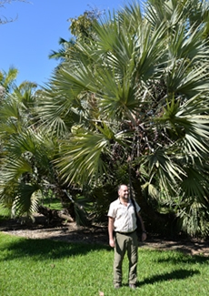 Kelly Botanical Research Fellow and Palm Expert, Dr. Fred Stauffer, Offers Lecture in Nell's House and Studies West African Palm at MBC.