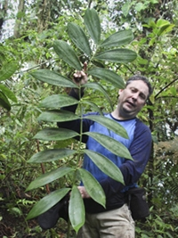 Montgomery Botanist and Colleagues Shed Light on Two Poorly Known Zamia Species from Colombia