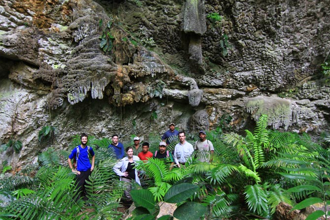 Cycad Expedition in Southern Belize