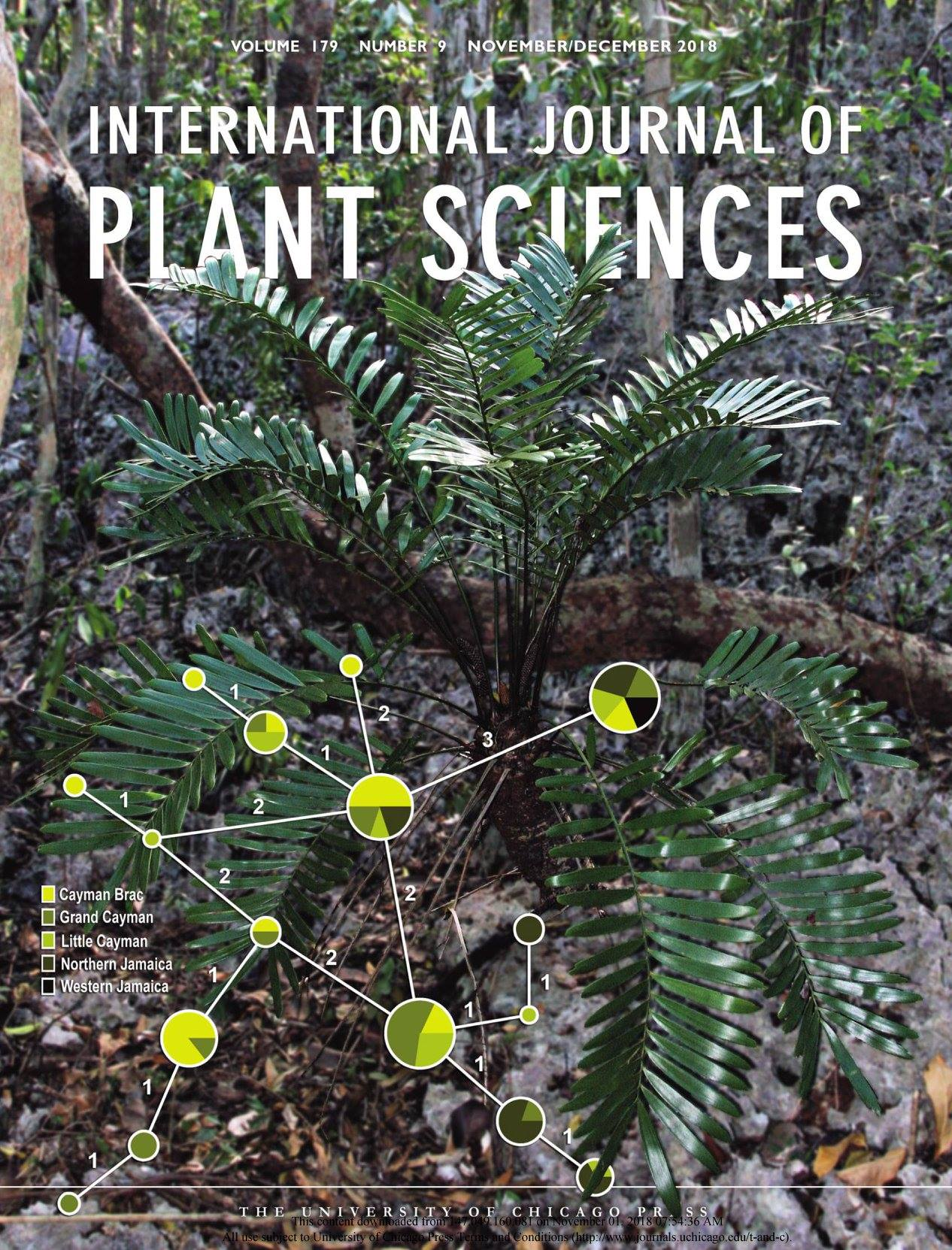 The cover of the March/April 2018 issue of the International Journal of Plant Sciences