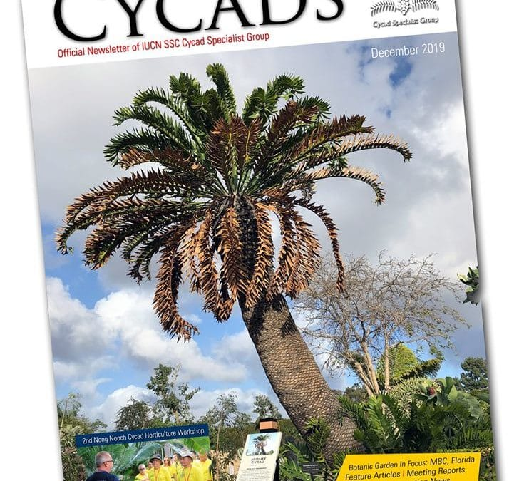 New Issue of CYCADS!